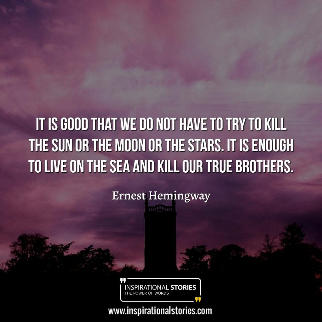 Brother Quotes And Sayings